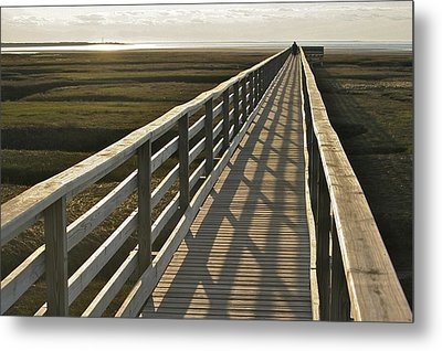 In The Shadows Metal Print by Jim Gillen