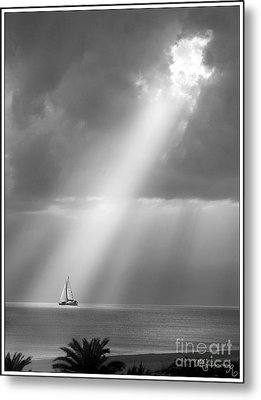 In The Spotlight Metal Print