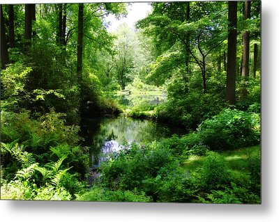 In The Stillness Metal Print by Trina  Ansel