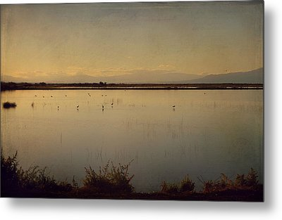 In These Peaceful Moments Metal Print by Laurie Search