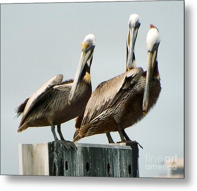In Unison Metal Print