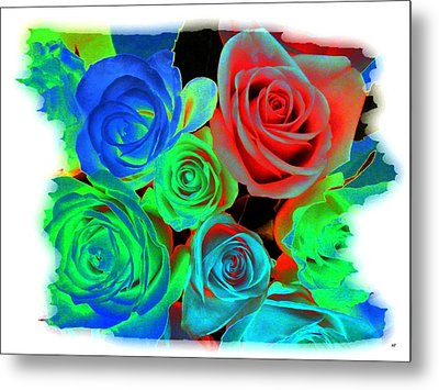 Incandescent Roses Metal Print by Will Borden