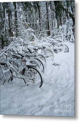 Inclement Weather Metal Print by KD Johnson