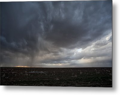 Incoming Storm Over A Cotton Field Metal Print