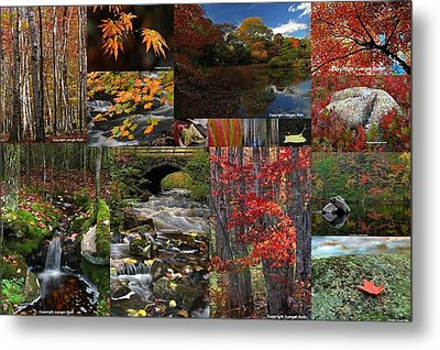 Incredible New England Fall Foliage Photography Metal Print by Juergen Roth