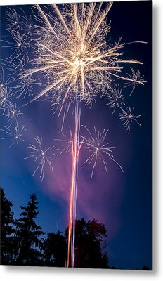 Independence Day 2014 1 Metal Print