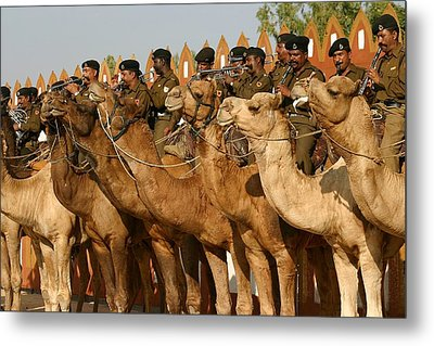 India Camel Band Metal Print by Henry Kowalski