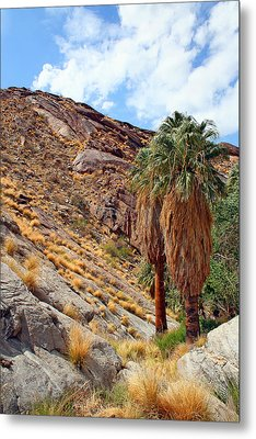 Indian Canyons View With Two Palms Metal Print by Ben and Raisa Gertsberg