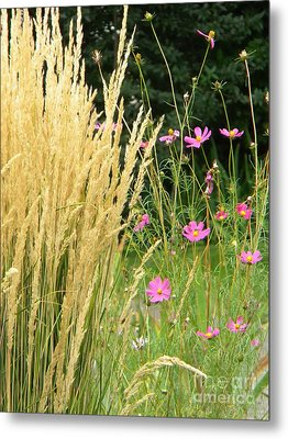 Indian Grass And Wild Flowers Metal Print