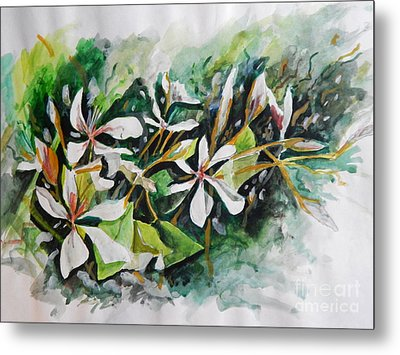 Metal Print featuring the painting New Orleans Indian Hawthorne by Michael Hoard