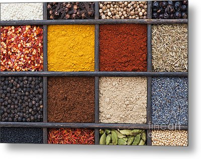 Indian Spices Metal Print by Tim Gainey