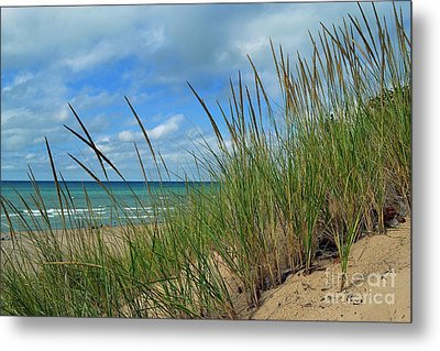 Indiana Dunes Sea Oats Metal Print