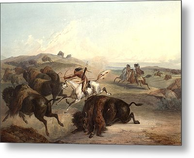 Indians Hunting The Bison Metal Print by Karl Bodmer