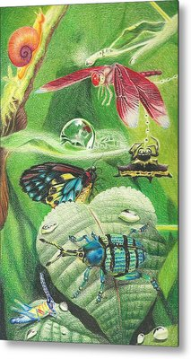Indigenous Insects Of New Guinea After A Rain Metal Print by Beth Dennis