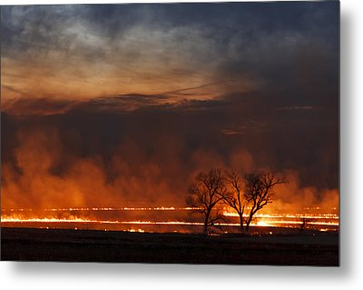 Inferno II Metal Print by Scott Bean