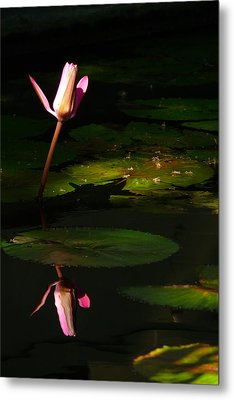 Metal Print featuring the photograph Inner Peace by Evelyn Tambour