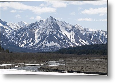 Inside Denali National Park 4 Metal Print