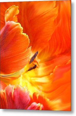 Metal Print featuring the photograph Inside Her Journey by The Art Of Marilyn Ridoutt-Greene