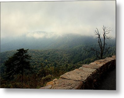 Inside The Clouds Metal Print by Shannon Louder