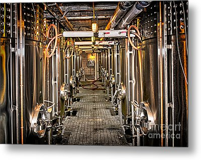 Inside Winery Metal Print by Elena Elisseeva