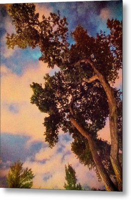 Inspired By Maxfield Parrish Metal Print