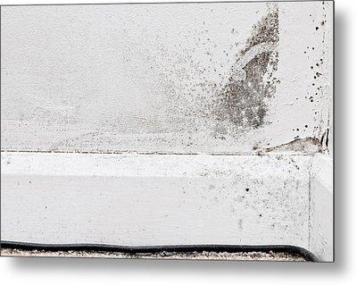 Interior Mildew Metal Print