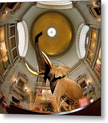 Interiors Of A Museum, National Museum Metal Print by Panoramic Images
