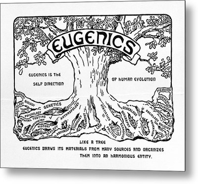 International Eugenics Logo Metal Print by American Philosophical Society