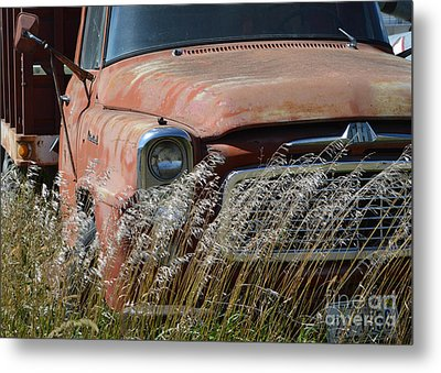 International Metal Print