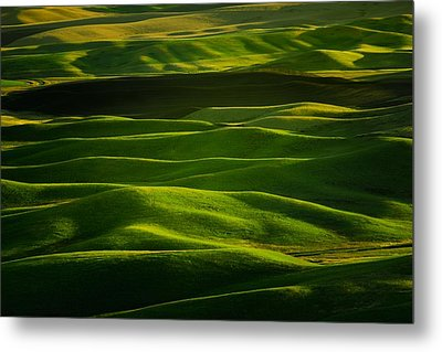 Interplay Metal Print