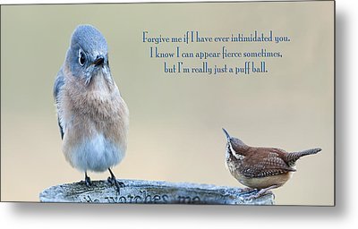 Intimidation Metal Print by Bonnie Barry