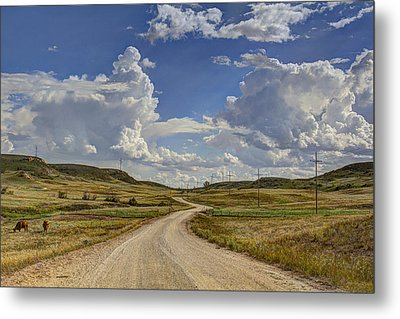 Into Little Valley  Metal Print