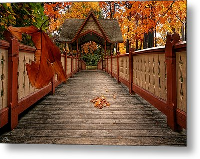Into The Autumn Metal Print by Lourry Legarde
