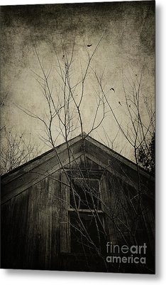 Into The Dark Past Metal Print by Trish Mistric