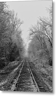 Into The Fog Metal Print