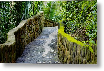 Into The Jungle Metal Print by Aged Pixel