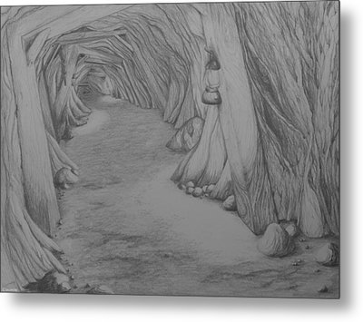 Into The Mountain Metal Print by Brenda Salamone