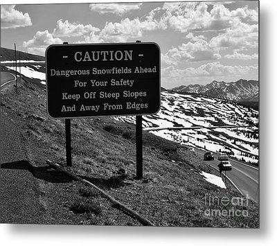 Into The Rockies Metal Print by Barbara Bardzik