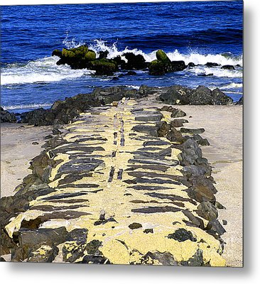 Into The Sea Metal Print by Colleen Kammerer