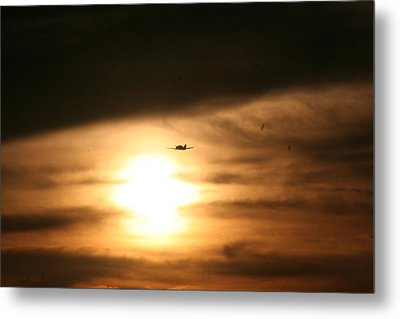 Metal Print featuring the photograph Into The Sun by David S Reynolds