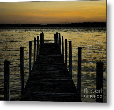 Into The Sunset Metal Print by B Wayne Mullins