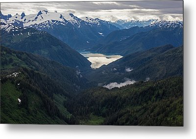 Into The Wild Metal Print by Mike Reid