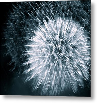 Metal Print featuring the photograph Intricate by Linda Mishler
