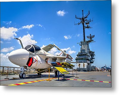Intruder On The Lexington Metal Print by Tim Stanley