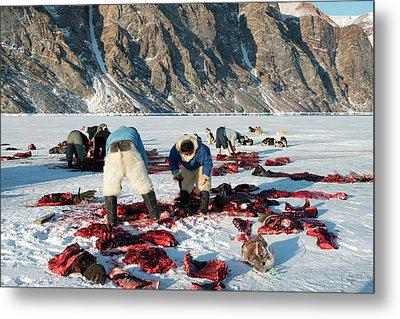 Inuit Hunters Butchering A Walrus Metal Print by Louise Murray