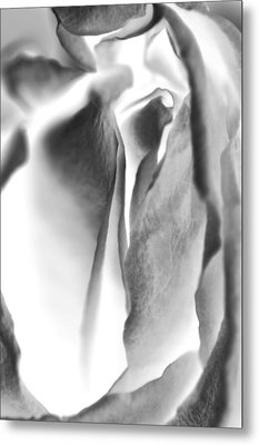 Inverted Rose Metal Print