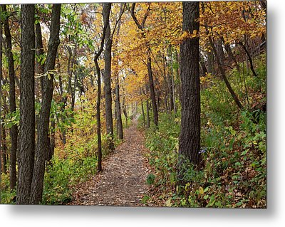 Iowa, Effigy Mounds National Monument Metal Print by Jamie and Judy Wild