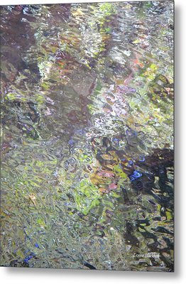 Iridescence Metal Print by Donna Blackhall