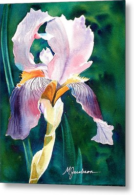 Iris 1 Metal Print by Marilyn Jacobson