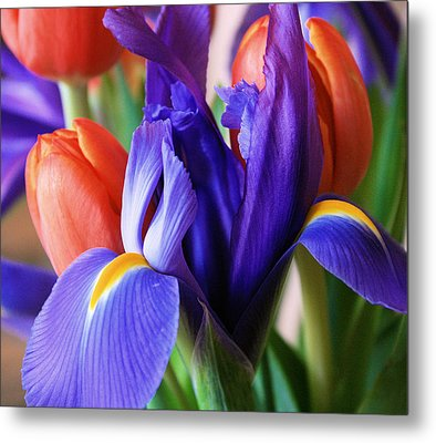 Iris And Tulips Metal Print by Gerry Bates